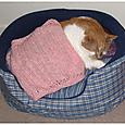 Kitty Crochet Blankey
