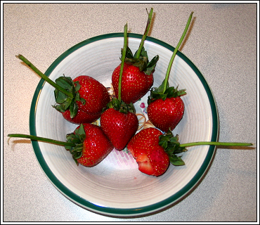 Friday_strawberries
