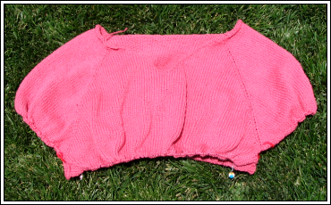 Sweater_progress_6_8_07