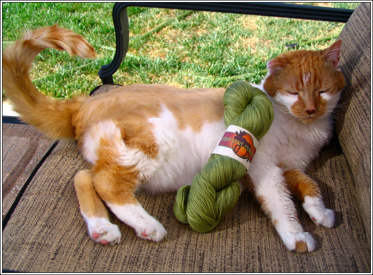 Kitty_and_dave_yarn_for_kew
