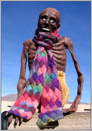 George_and_the_entrelac_scarf_jan_0