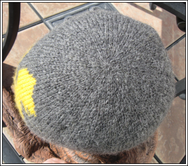 Double_knit_duckie_hat_top