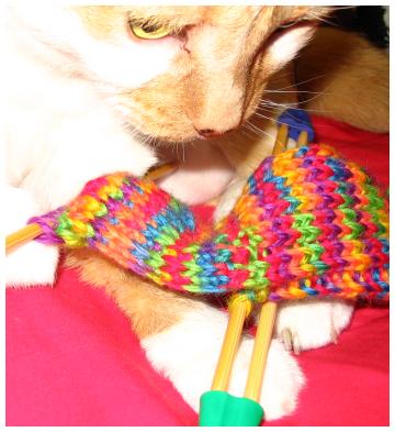 Kitty_sock