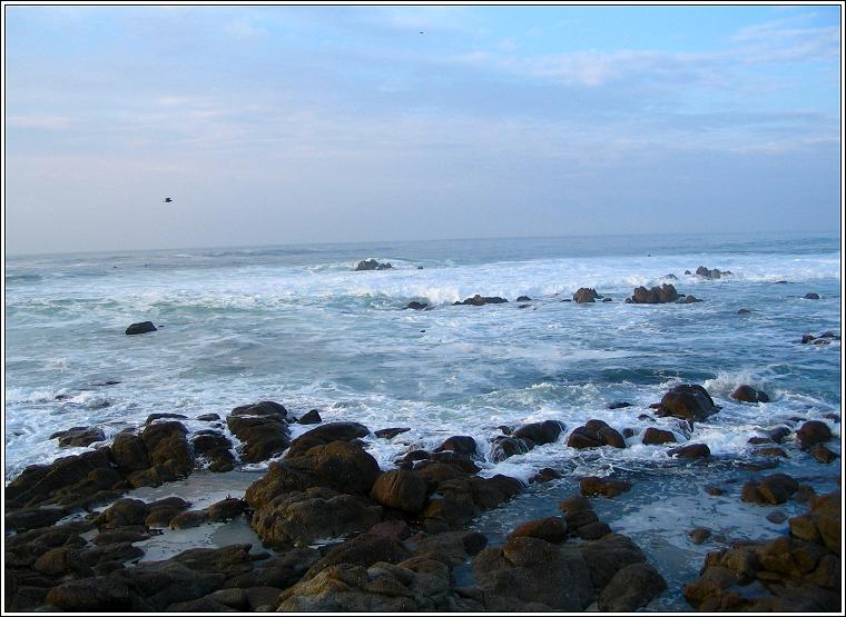 Nov_8_05_coast