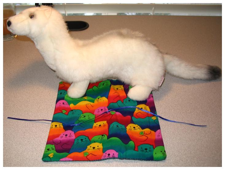 Otter_needle_case_and_ferret
