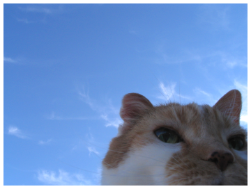 Saturday_sky_kitty2