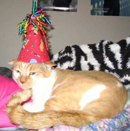 tkk_with_party_hat